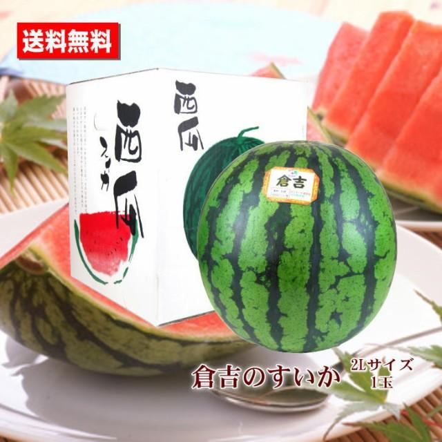 送料無料 倉吉のすいか 鳥取県産 2L 1玉 すいか あまい 糖度センサー お中元ギフト 贈答用 家庭用 おためし