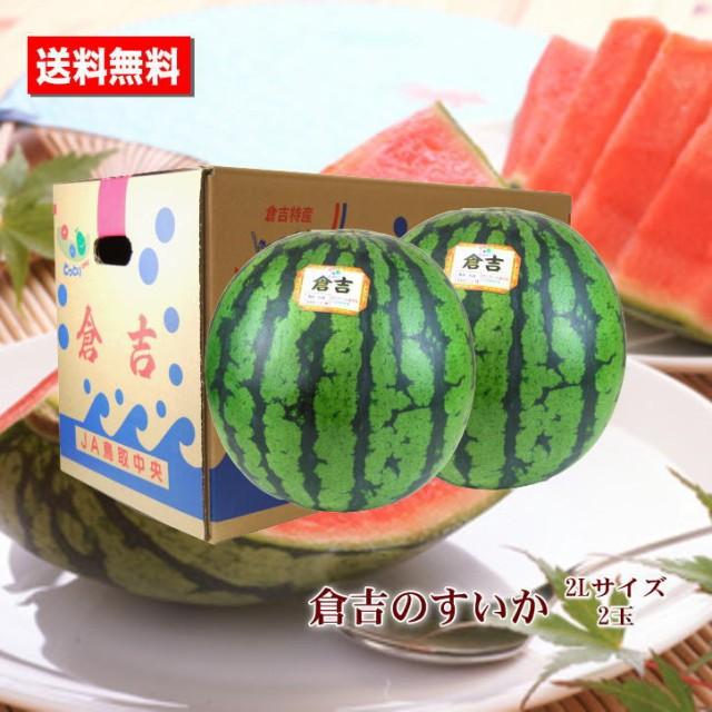 送料無料 倉吉のすいか 鳥取県産 2L 2玉 すいか あまい 糖度センサー お中元ギフト 贈答用 家庭用 おためし