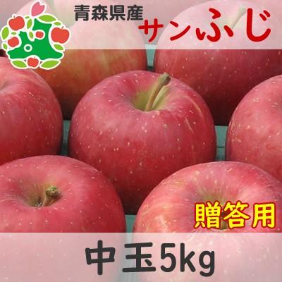 【CA貯蔵りんご】 りんご 贈答用 青森県産 サンふじ 特選 中玉 5kg