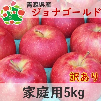りんご 訳あり 青森県産 ジョナゴールド 家庭用 キズあり 5kg