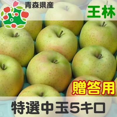 りんご 贈答用 青森県産 王林 特選 中玉 5kg