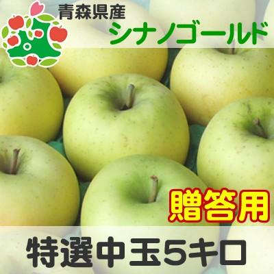 【CA貯蔵りんご】 りんご 贈答用 青森県産 シナノゴールド 特選 中玉 5kg