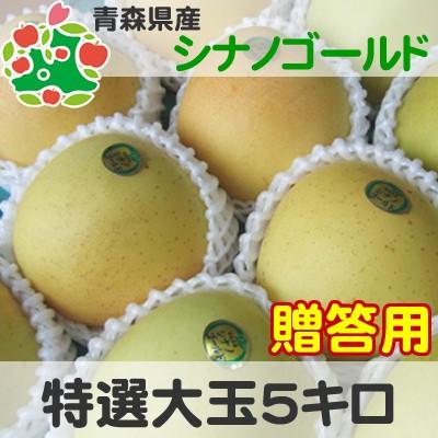【CA貯蔵りんご】 りんご 贈答用 青森県産 シナノゴールド 特選 大玉 5kg