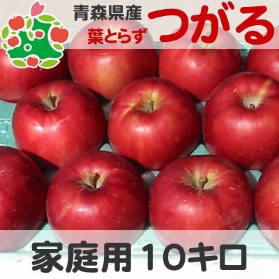 【即日出荷】 りんご 訳あり 青森県産 葉とらず つがる 家庭用 キズあり 10kg (きおうとの詰め合わせ可能)