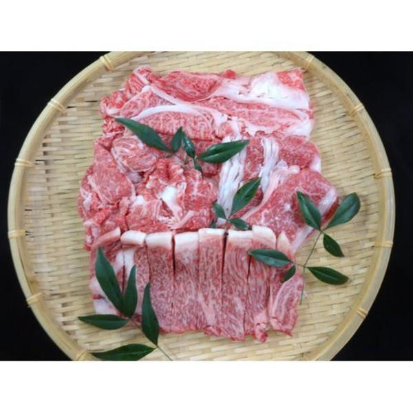 仙台牛 牛肉 A5ランク 【食べ比べセット 1kg】 切り落とし・カルビ・肩ロース・サーロイン 精肉 霜降り【代引不可】