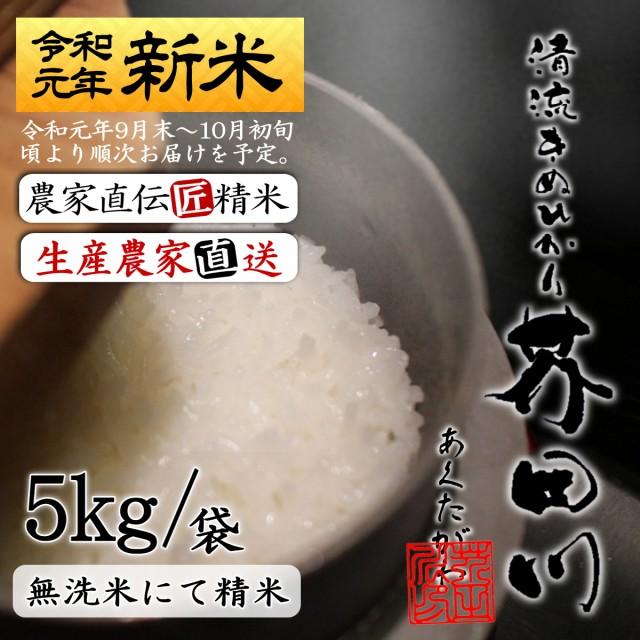 送料無料 新米 お米 5kg袋 無洗米にて精米 令和元年秋収穫 清流きぬひかり芥田川 5キロ 生産農家直送