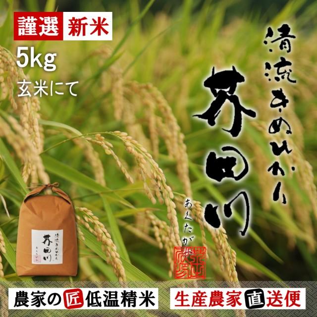 送料無料 新米 お米5kg袋 玄米にて 令和元年秋収穫 清流きぬひかり芥田川 農家直送 米5キロ big_dr