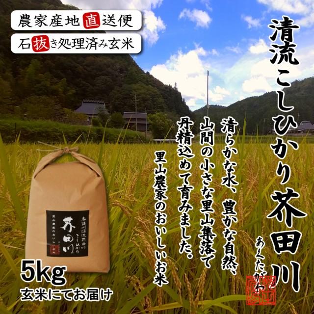 送料無料 新米 お米 5kg/袋 玄米にて 令和元年秋収穫 奥播州源流芥田川産こしひかり 米5キロ
