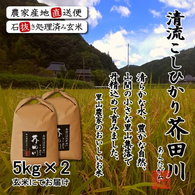 送料無料 新米 お米 10kg(5kg/袋×2) 玄米にて 令和元年秋収穫 奥播州源流芥田川産こしひかり 米10キロ 5キロ×2