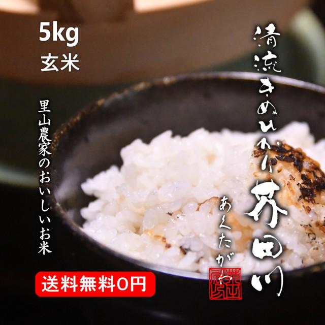 米 お米 5kg 玄米 清流きぬひかり芥田川 送料無料 生産農家直送 令和2年産