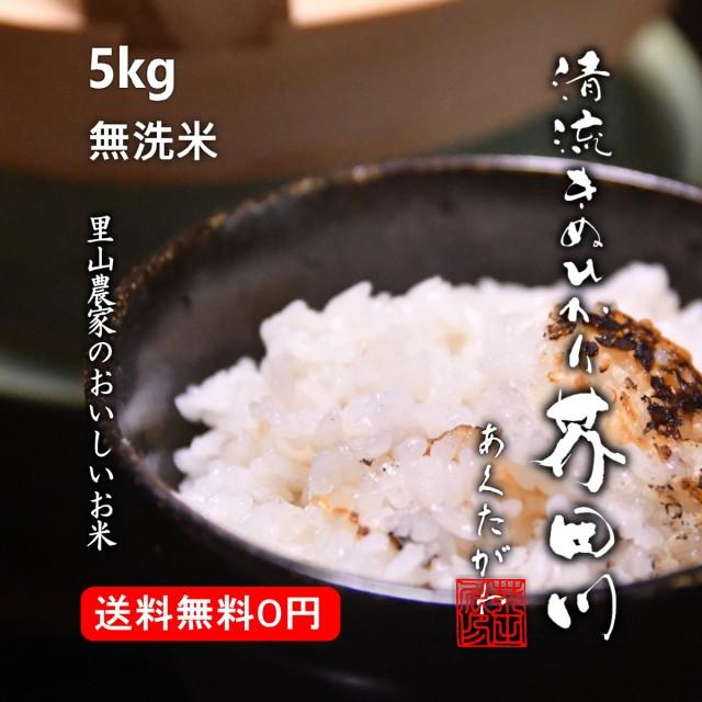 令和2年秋 予約生産 お米 5kg 無洗米 精米 清流きぬひかり芥田川 送料無料 生産農家直送
