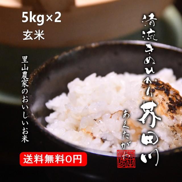 新米 お米 10kg 5kg×2 玄米 清流きぬひかり芥田川 農家産地直送 送料無料 令和2年産