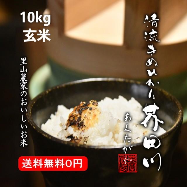 米 お米 10kg 玄米 清流きぬひかり芥田川 送料無料 農家産地直送 令和2年産