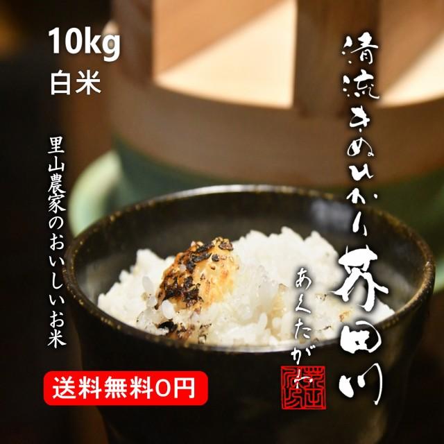 米 お米 10kg 送料無料 白米〜分づき 精米 清流きぬひかり芥田川 令和元年産 農家産地直送