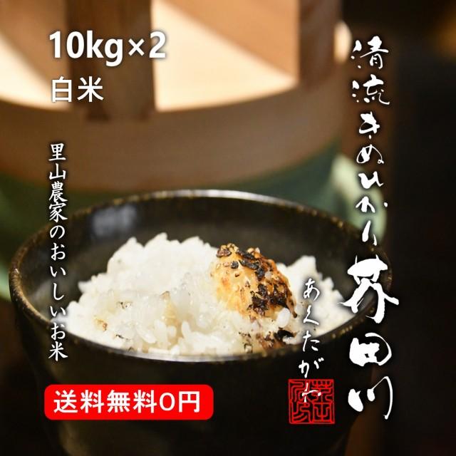 米 お米 10kg×2 20kg 送料無料 白米〜分づき 精米 清流きぬひかり芥田川 令和元年産 農家産地直送