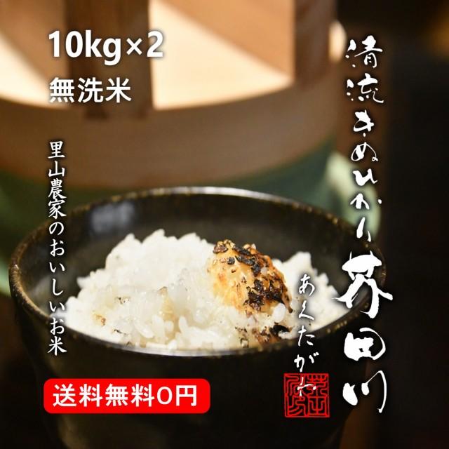 米 お米 10kg×2 20kg 送料無料 無洗米 精米 清流きぬひかり芥田川 令和元年産 農家産地直送