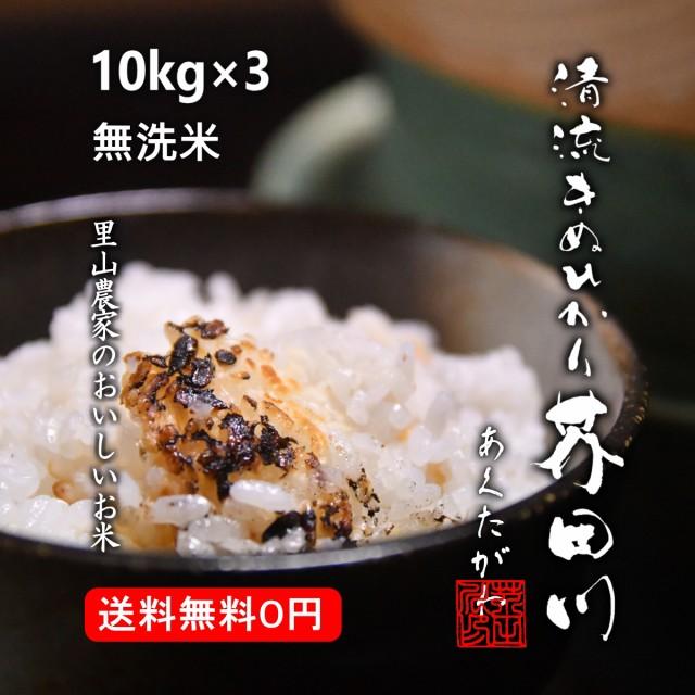 米 お米 30kg 10kg×3 送料無料 無洗米 精米 清流きぬひかり芥田川 令和元年産 農家産地直送