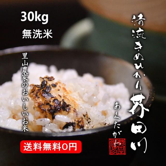 米 お米 30kg 送料無料 無洗米 精米 清流きぬひかり芥田川 令和元年産 農家産地直送