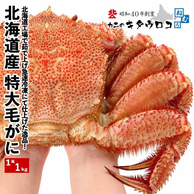 毛がに 特大サイズ 北海道産 1尾1kg前後x1尾入 お取り寄せ 毛ガニ 毛蟹 かに カニ 蟹 父の日 ギフト 送料無料