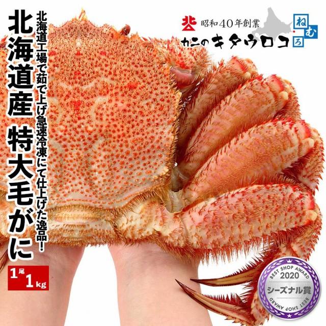北海道産 毛がに 特大サイズ 1尾 1kg お取り寄せ 毛ガニ 毛蟹 かに カニ 蟹 送料無料
