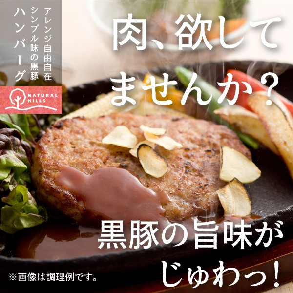 送料無料 鹿児島県産黒豚ハンバーグ 90g×3個(トレー入)×6パック ポイント消化 big_dr