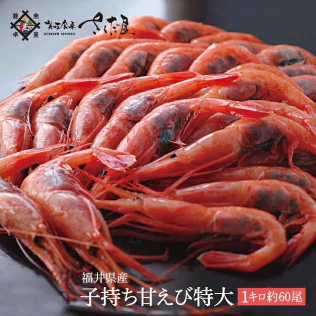 越前産 子持ち甘えび 特大サイズ 1kg(500g×2) 約60尾 甘エビ 卵【冷凍便】