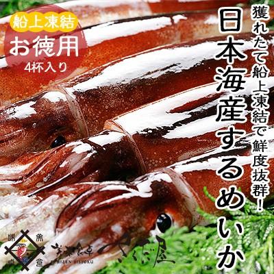 海鮮 BBQセット バーベキューセット 日本海するめいか 4杯 船凍イカ【冷凍便】