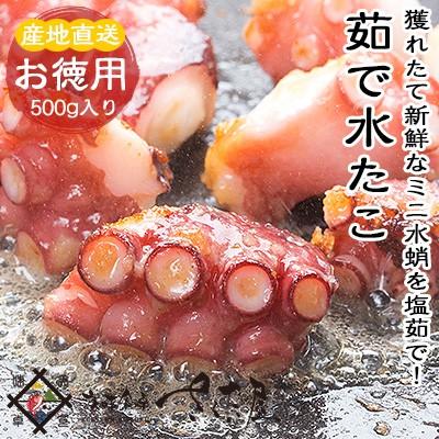 海鮮 BBQセット バーベキューセット 福井県産 ミズダコ ミニサイズ【冷凍便】【訳あり】