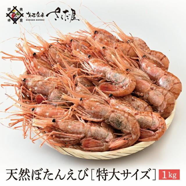 天然ジャンボぼたんえび 1kg 特大サイズ 14〜16尾 生食可【冷凍便】