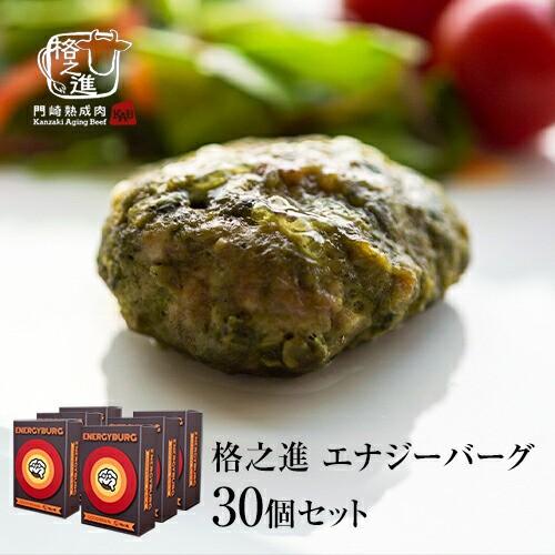 格之進 エナジーハンバーグ 30個セット ハンバーグ のし対応可能 レビューを書いて送料無料 バーベキュー ギフトセット 和牛 焼肉 BBQ 冷