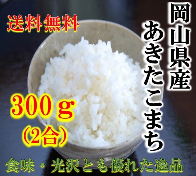 新米 ポイント消化 送料無料 300 食品 米 お試し 令和元年産 岡山県 あきたこまち300g(2合) 1kg未満 アキタコマチ 代引不可