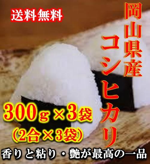 新米 ポイント消化 送料無料 300 g 食品 お試し 米 こめ 令和元年産コシヒカリ 300g(2合)×3袋 1kg未満 こしひかり メール便 代引不可