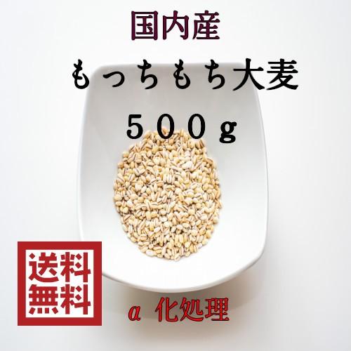 麦 ポイント消化 送料無料 500g 食品 雑穀 お試し 国内産 もっちもち大麦500g1袋 α化処理 1kg未満 大麦 もち麦の代わりに 代金引換不可