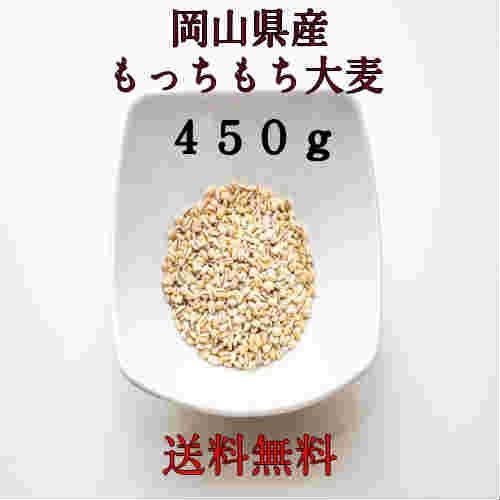 麦 ポイント消化 300 送料無料 300 食品 雑穀 お試し もっちもち麦 450g 1kg未満 国内産(岡山県産)100%大麦です。令和元年産 代金引