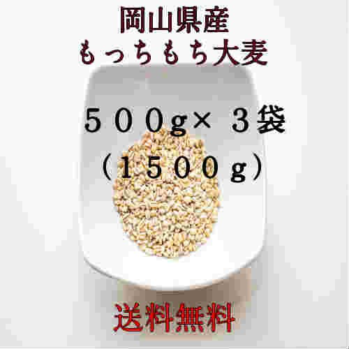 麦 ポイント消化 送料無料 500 g ×3 食品 雑穀 お試し もっちもち麦 1.5kg(500g×3袋) 格安 国内産(岡山県産)令和元年産 大麦です