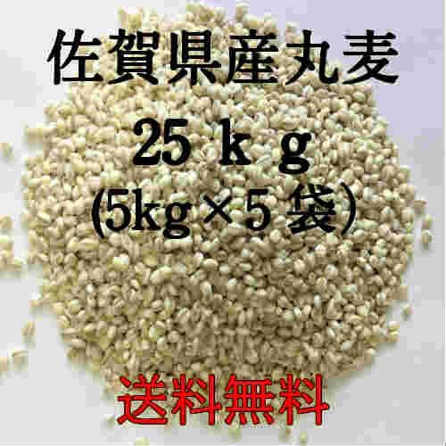 麦 令和2年産 大麦 佐賀県産 丸麦(大麦) 25kg(5kg×5袋) α化 ポイント消化 送料無料 雑穀・雑穀米 古代米 食品 安い もち麦の代