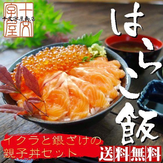 脂の乗った三陸産お刺身銀鮭とイクラの親子丼セット たっぷり3人前 サーモンと鱒子いくらのはらこ飯 送料無料 鮭 さけ いくら ギフト