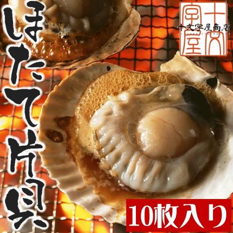 北海道噴火湾産 片貝付き生ホタテ 冷凍品 10枚入り 帆立 ほたて バーベキュー BBQ グラタン バター焼き