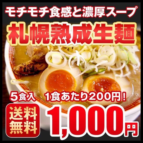 ラーメン 送料無料 ぽっきり 生ラーメン 北海道 札幌熟成生麺 5種食べくらべ メール便 1000円ポッキリ 味噌 しょう油 塩