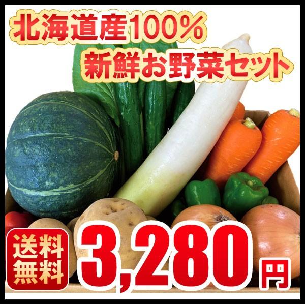 北海道産 野菜セット 詰め合わせ じゃがいも 玉ねぎ 大根 人参 ミニトマト きゅうり 小松菜 サラダ菜 小葱 豆苗