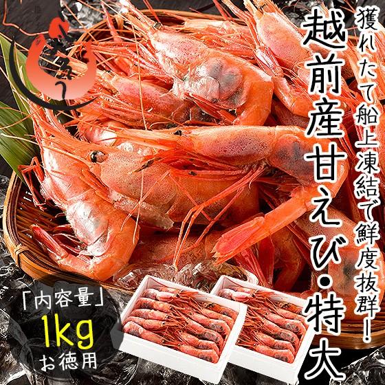 越前産 甘えび 子持ち特大サイズ 1kg(500g×2箱)約60尾入り 刺身用 甘エビ