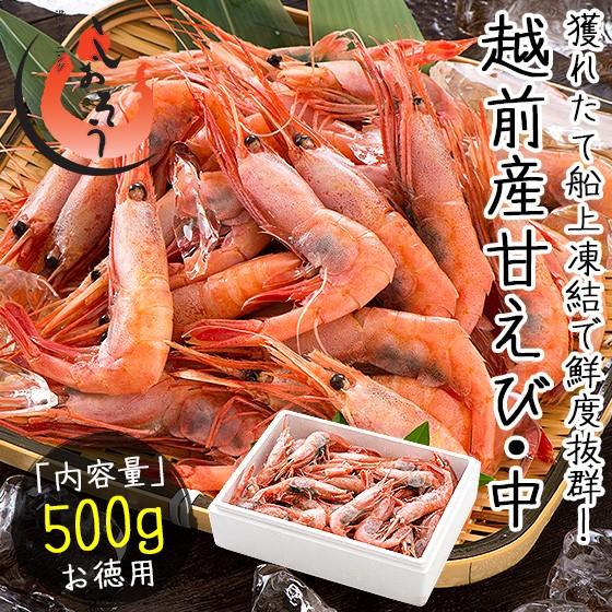 越前産 甘えび 甘エビ 子持ち中サイズ 500g(約40尾入り)刺身用
