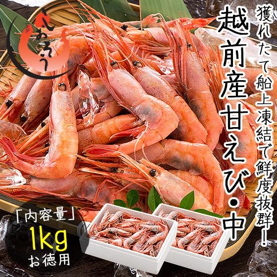 越前産 甘えび 甘エビ 子持ち中サイズ 1kg(500g×2箱)約80尾入り 刺身用