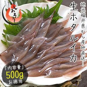 生 ホタルイカ ほたるいか 500g 生食用