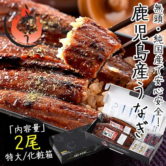 うなぎ 蒲焼き 無頭 鹿児島県産 国産 特大サイズ 約200g×2尾 ウナギ 鰻 化粧箱