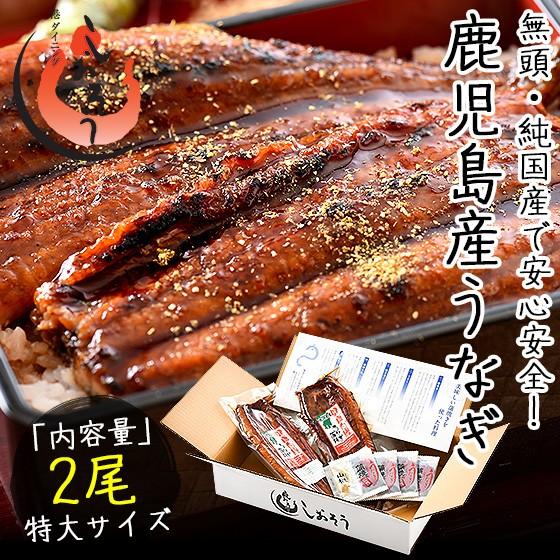 うなぎ 蒲焼き 無頭 鹿児島県産 国産 特大サイズ 約200g×2尾 ウナギ 鰻