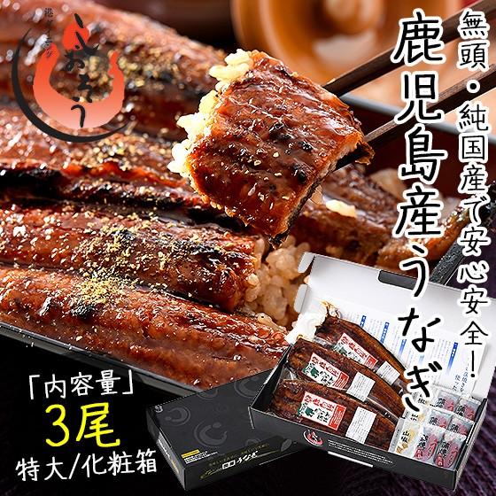 うなぎ 蒲焼き 無頭 鹿児島県産 国産 特大サイズ 約200g×3尾 ウナギ 鰻 化粧箱