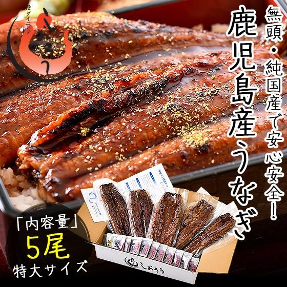 うなぎ 蒲焼き 無頭 鹿児島県産 国産 特大サイズ 約200g×5尾 ウナギ 鰻