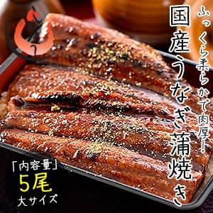 うなぎ 蒲焼き 国産 大サイズ 170g×5尾 ウナギ 鰻