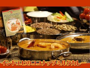 無添加 インドカレー エビのココナッツミルク カレー 3箱セット (レトルトカレー)